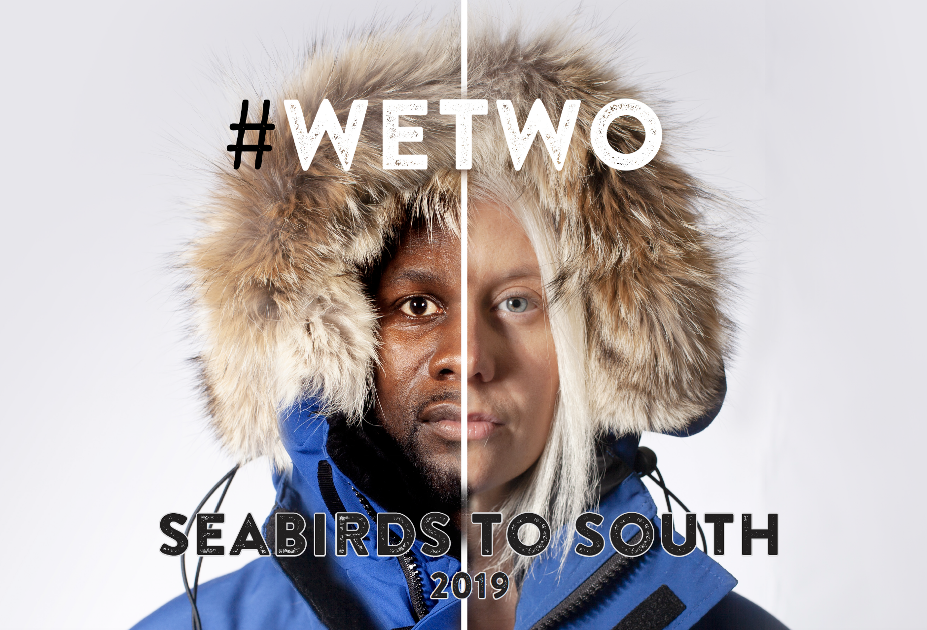 Seabirds to South – begins!
